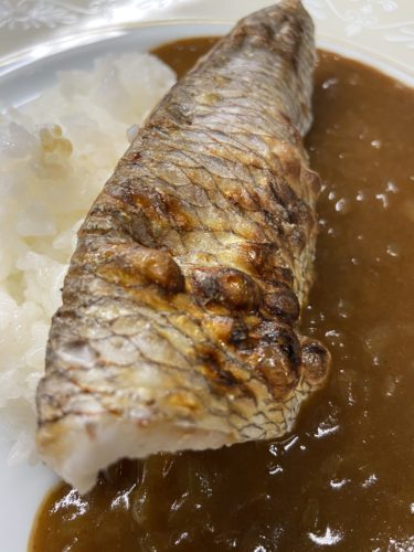 天然鯛カレー